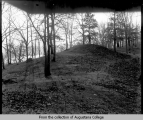 Black Hawk State Park, mound in woods