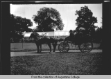 [Horse drawn carriage in park]