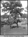 Man on horse, Illinois National Guard
